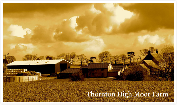 Thornton High Moor