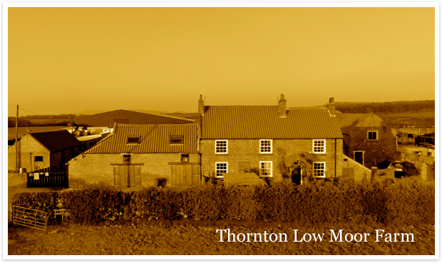 Thornton Low Moor